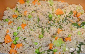 13 Balanced Homemade Dog Food Recipes Dog Food Recipes Homemade