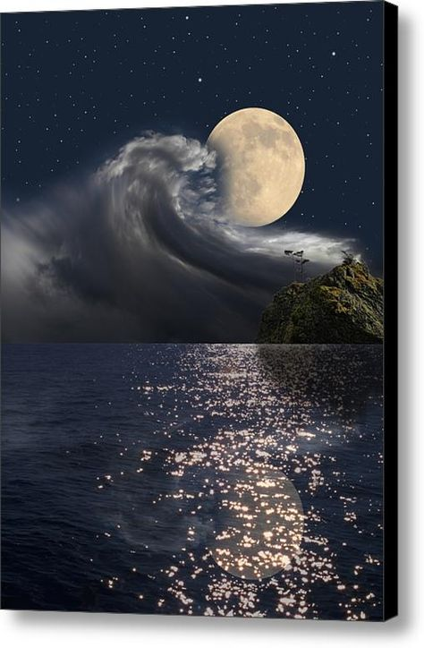 3851 Canvas Print / Canvas Art By Peter Holme Iii