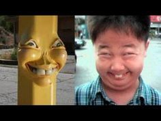 8 Best Youtube funny videos 2017 top collection funny clips
