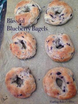 best blueberry bagels recipe on pinterest