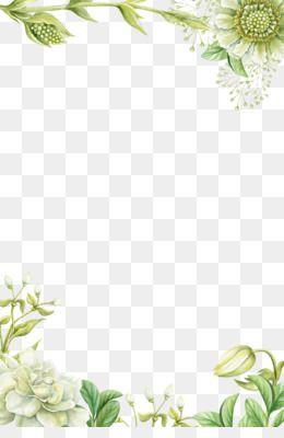 Flowers Png Flowers Transparent Clipart Free Download Wedding Videography Photographer Photog Pintura Floral Flores Pintadas Plantilla De Petalos De Flores