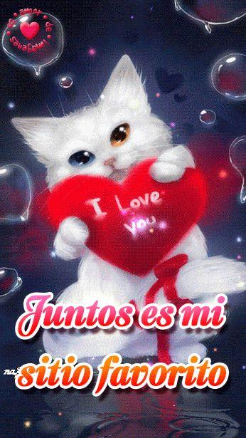 bonita imagen con movimiento de gatito con corazón y frase de amor