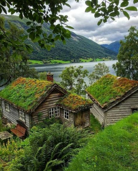 Astruptunet / Norway (by Vibeke). (It's a beautiful world) The Places Youll Go, Places To Go, Beautiful World, Beautiful Places, Beautiful Norway, Cabins And Cottages, Cabins In The Woods, Beautiful Landscapes, Wonders Of The World