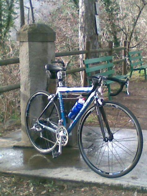 #PersonalTrainerBologna #Colnago #bicicletta #bici #bdc #ciclismo #sport #endurance