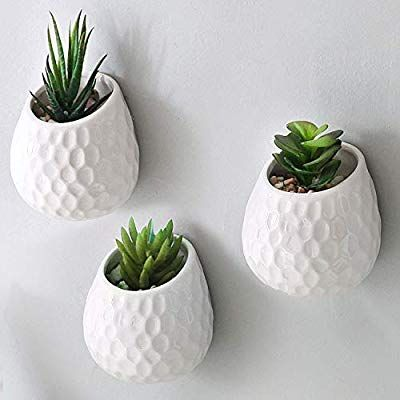Amazon Com Mygift 4 Inch Golf Ball Inspired White Ceramic Wall Mountable Mini Planters Hanging Succulent Pots In 2020 Hanging Succulents Succulent Pots Wall Planter