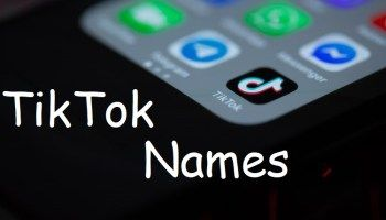 1600 Best Tiktok Bios For Boys And Girls Boy Or Girl Trouble Maker Names