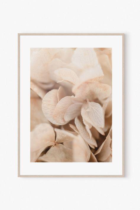 Botanical Flower Wall Art Prints Decor Photo