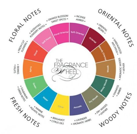 perfume making. Has lots of informations about perfumes we all know. Great chart.
