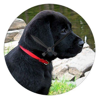 Little Red Collar Black Lab Puppy