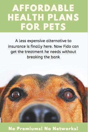 A New And Affordable Cooperative Pet Health Plan Finally An