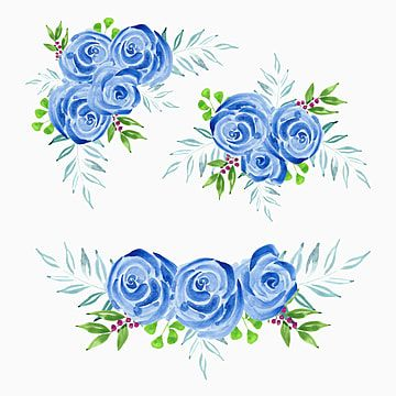Blue Rose Flower Bouquet Watercolor Illustration Blue Clipart Vintage Illustration Png And Vector With Transparent Background For Free Download Watercolor Illustration Watercolor Flower Wedding Pink Roses Background