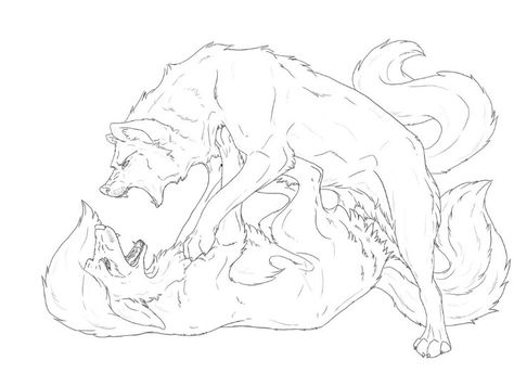 Anime Wolves Fighting Coloring Pages - Get Coloring Pages | 356x474