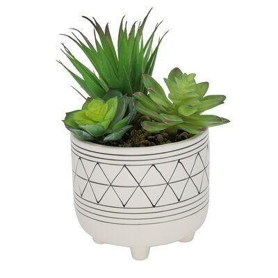 Flora Bunda 9 Inches Tall Faux Cactus Garden in 5 Inches Hand-Painted Geometric Planter Ceramic Pot Planter Mid Century
