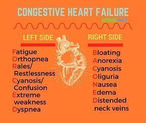 Congestive Heart Failure #nursingstudent #nursesrock #memorize - Image Credits: NurseBuff