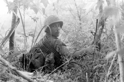 """(A Marine of """"M"""" Company, 3/5 looks over his shoulder for the Viet Cong during a move through heavy jungle)"""