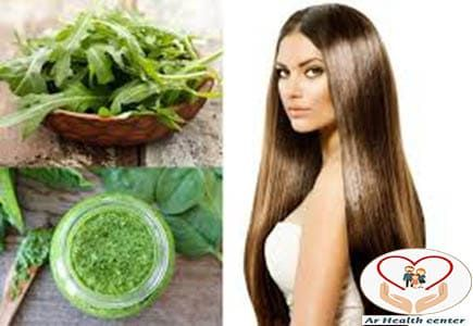 وصفة الجرجير لوقف تساقط الشعر وزيادة كثافة الشعر Long Hair Styles Hair Styles Hair
