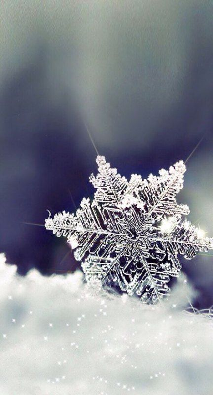36 Super Ideas Photography Nature Snow Snowflakes Iphone Wallpaper Winter Winter Wallpaper Wallpaper Iphone Christmas