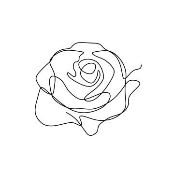 Roses Line Drawing Ufprame Co Flower Line Drawings Line Art Flowers Line Art Drawings
