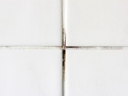 Sick Of Moldy Grout With Images Clean Shower Tile Grout
