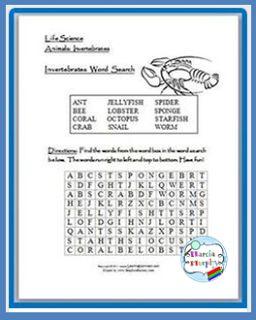 Invertebrate Puzzle | Classroom freebies, Fun classroom ...