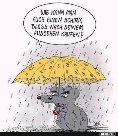 Wie kann man auch einen Schirm bloss nach seinem Aussehen..