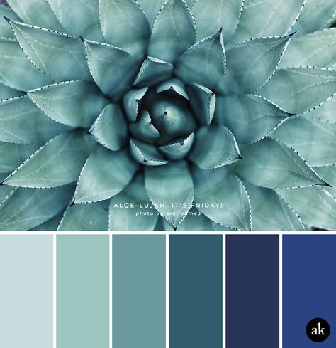 Amusing Royal Blue Color Bathroom