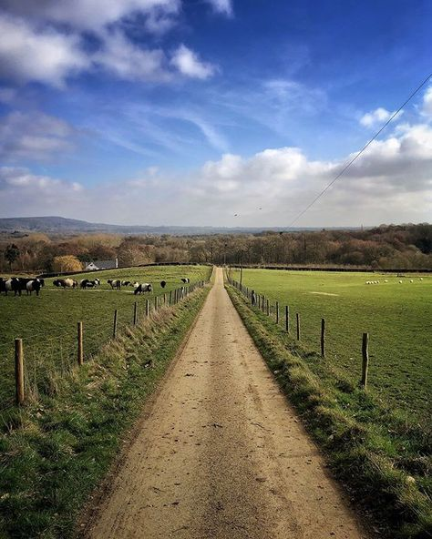 Another Day Landscape Perspective Backpocketnature Fields Cowsofinstagram Lunchtimewalk Beaniedee Shotonipho Instagram Landscape Nature