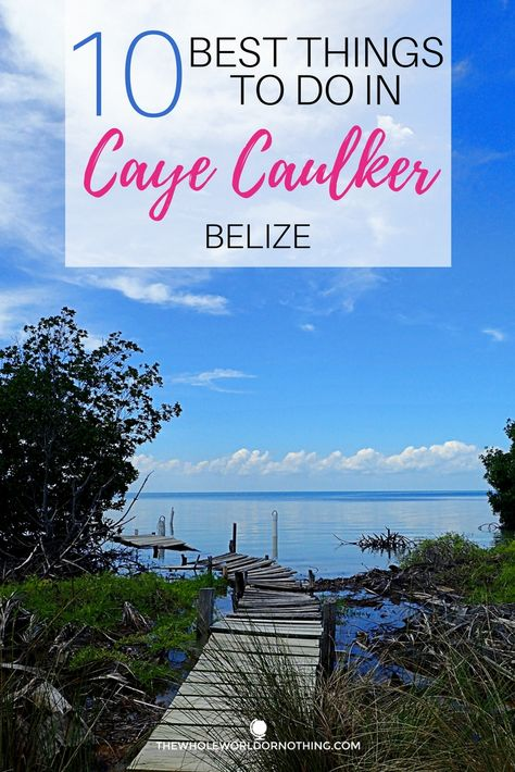 Travel Guide To Caye Caulker Belize | Best Caribbean Islands | Belizean Islands | Best Places To Swim With Sharks | Largest Barrier Reefs | What To Eat on Caye Caulker | Belize Travel Itinerary | Central America Backpacking | #cayecaulker #belize #goslow #unbelizable #backpacking #centralamerica #youbetterbelizeit #caribbean #caribbeanislands #islandlife #swimwithsharks #bestdivesites #barrierreef #topdives