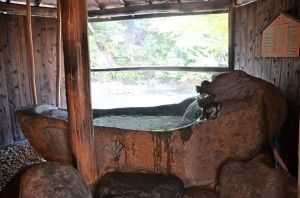japanese bath in the shire