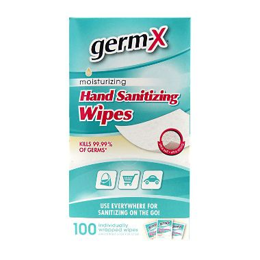 Germ X Antibacterial Soft Wipes Singles 100 Ct Hand Sanitizer