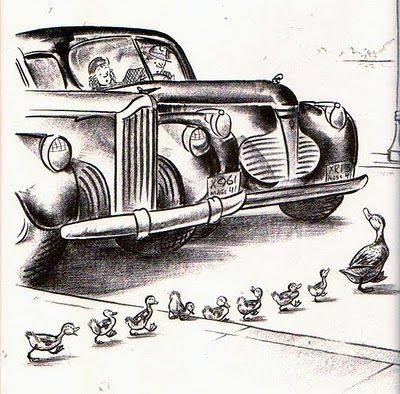 Make way for ducklings.