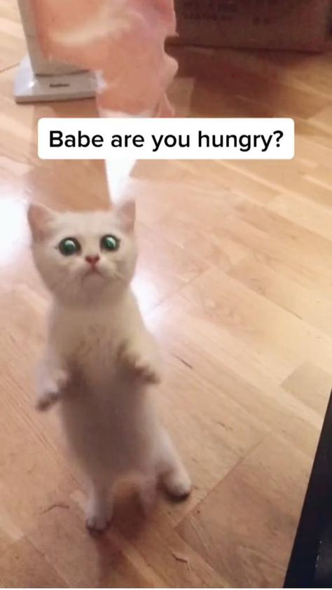Babe are you ??���