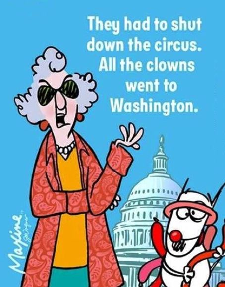 They had to shut down the circus. All the clowns went to Washington. - Maxine Humor - Maxine Humor meme - - They had to shut down the circus. All the clowns went to Washington. Haha Funny, Funny Jokes, Hilarious, Funny Stuff, Memes Humor, Cat Memes, Just For Laughs, Just For You, Senior Humor