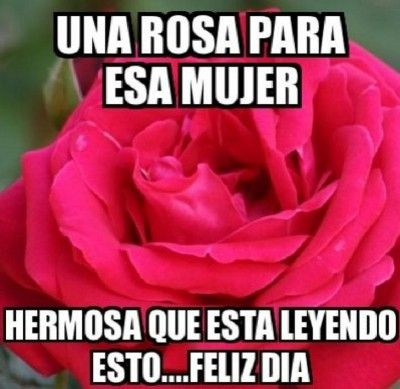 Lindo Dia Princesa Hermosa Tqm Imagenes De Felicidad Feliz Día De La Mujer Dia De La Mujer
