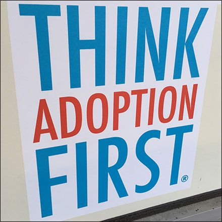 Think Adoption First Urges Petco Adoption Pets Close Up