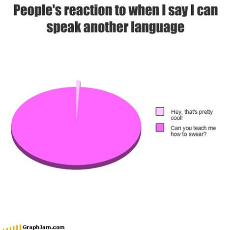 "ugh - SO TRUE - the pie chart is missing the sections that represents the % of people who 1) ask me to ""say something"" so they can hear what ""that language"" sounds like! that's usually when i tell them- IRSE a La CHINGADA- LA PUTA!! ;)"