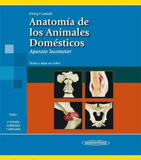 Libros De Veterinaria Gratis König Anatomía De Los Animales Domésticos Tomo I Anatomía Anatomia Veterinaria Libros De Anatomia