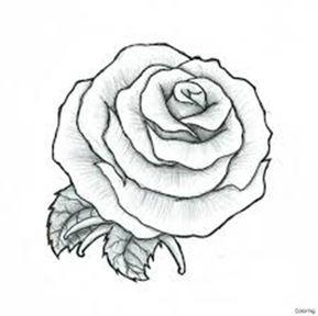Cómo Dibujar Una Rosa Rosas Para Dibujar A Lápiz Dibujos De Rosas Dibujos A Lapiz Rosas Como Dibujar Rosas