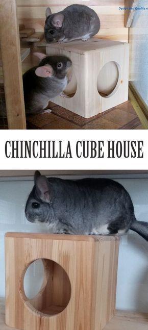 Chinchilla Cube House Chinchila Chinchilas Animais