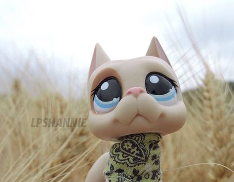 Littlest pet shop dog picture (c) lpshannie