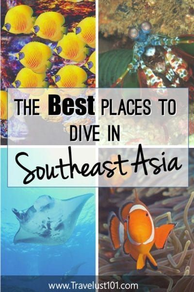 Scuba Travel | Scuba Diving Sites | Looking for scuba diving destination inspirations? Southeast Asia has some of the best dive sites in the world! Check out this post for the top 11 scuba diving in Southeast Asia and all the travel tips you need to plan your next scuba holiday. #scuba #scubadiving #goscuba #scubadive #bestdivesites