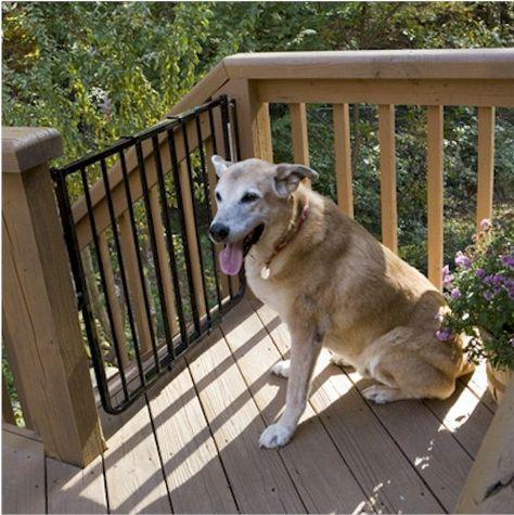 Stairway Special Outdoor Dog Gate