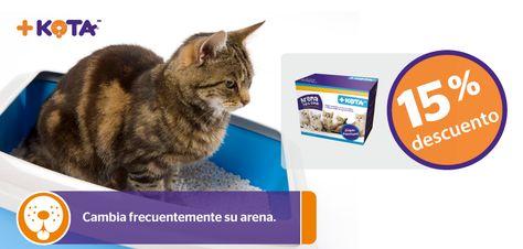 Comprando Arena Para Gato Marca Kota Recibes Una Bonificacion Y