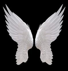 Free Stock Photo Of White Angel Wings In 2021 White Angel Wings Wings Wallpaper Swan Wings