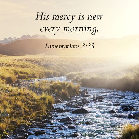 Home Christian Inspiration Stories Morning Bible Quotes Bible