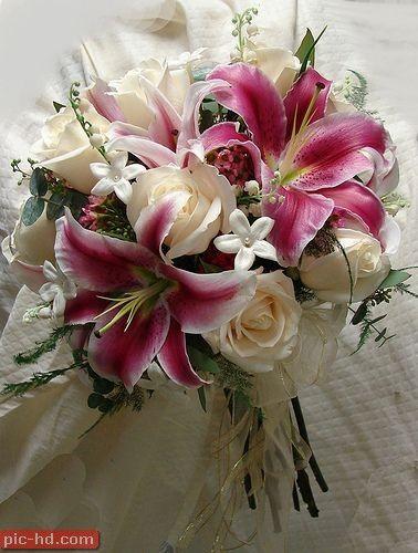 صور بوكيه ورد صور بوكيهات ورد جميلة اجمل صور بوكيه ورود Lily Bouquet Wedding Stargazer Bouquet Stargazer Lily Bouquet