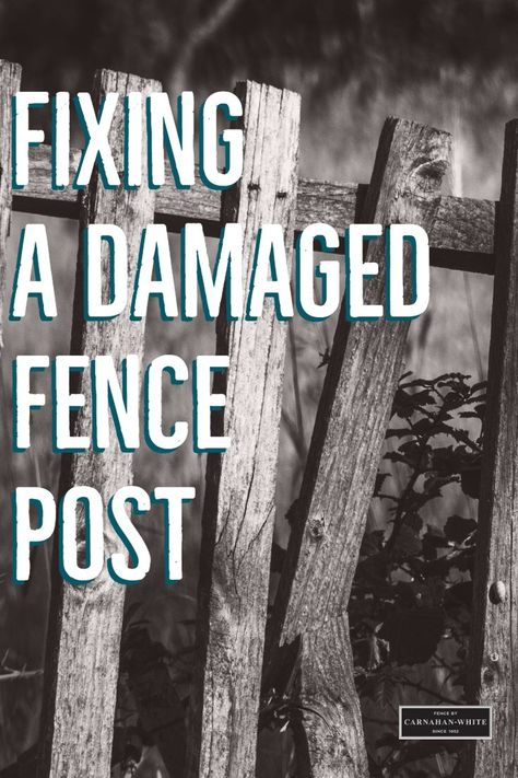 How To Repair A Wood Fence In 2020 Wood Fence Fence Wooden Fence