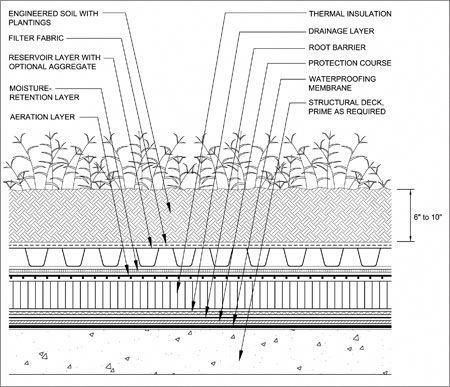 Green Roofs And Great Savings Green Roof Green Roof System Roof Detail