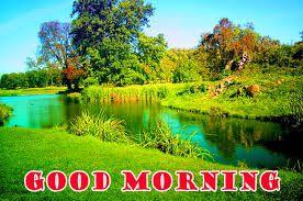Nature Good Morning Photo Hd Download Good Morning Images Good Morning Nature Good Morning Images Download