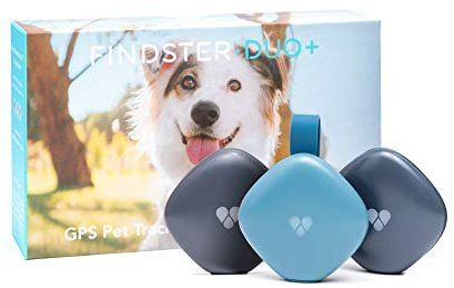 Amazon Com Findster Duo Pet Tracker Free Of Monthly Fees Gps Tracking Collar For Dogs And Cats Pet Activity Monitor Pe Pet Tracker Dog Tracker Pets Cats